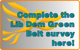 Green Belt survey